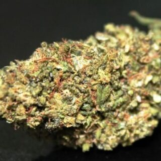Buy Moon Cookies Marijuana Strain