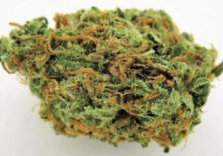 S5 Haze Weed Strain UK