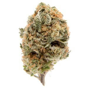 Skunkberry Marijuana Strain UK