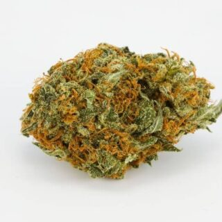 Buy Spec Ops Weed Strain UK