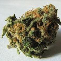 Dark Helmet Marijuana Strain