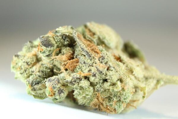 Peanut Butter Breath Strain