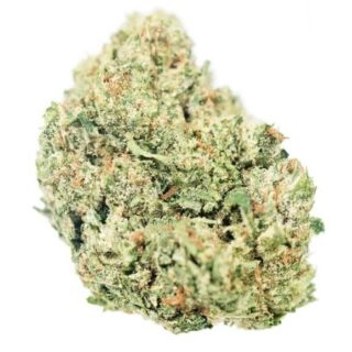 The White Weed Strain
